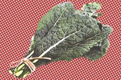 Evolution has given this popular brassica, like most every other vegetable, an arsenal of anti-vegan defenses.