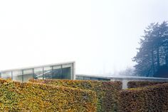 Hedge House | Wijlre, the Netherlands | Wiel Arets Architects