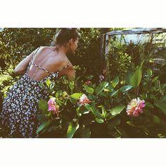 // garden, lifestyle //