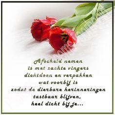 Foto 50, Afscheid nemen. Bloemen blijven mooi. Vooral tulpen, omdat ze er maar beperkt zijn. Deze rode tulpen met rafelige rand combineerde mooi met een tekst van afscheid nemen.