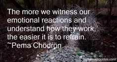 Pema Chodron quotes: top famous quotes and sayings from Pema Chodron