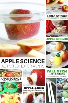 Apple Science Experiments and STEM Activities for Kids Apple science experiments and activities for kids that use real apples. Fun apple science experiments for preschool, kindergarten, and early elementary age kids. Preschool Apple Theme, Apple Activities, Preschool Apples, Fall Preschool, Autumn Activities, Kindergarten Lesson Plans, Kindergarten Science, Preschool Plans, Elementary Science
