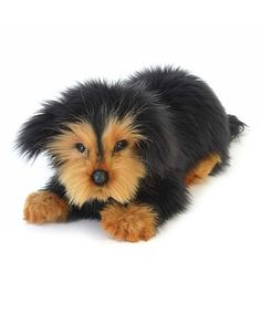 Take a look at this Long-Haired Dachshund Puppy Plush Toy today!