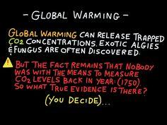 Environmental Chemistry, Global Warming, Fungi, Facts, Mushrooms