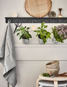 Looking for innovative ideas for your kitchen garden? Create a display with hangers! IKEA offers a lot of different clothes hangers such as BUMERANG chrome-plated trouser/skirt hanger.