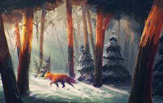 Wallpapers for Desktop: fox picture, 2034 kB - Preston Thomas