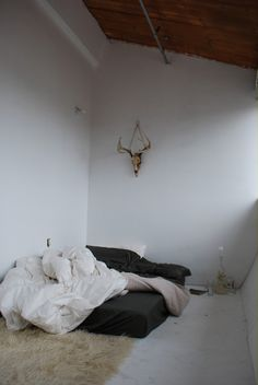 spaciousness of high ceilings coupled with minimalistic bed