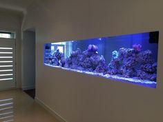 Quality Custom Built Fish Tank Aquariums | Pet Products | Gumtree Australia Victoria - Melbourne Region | 1056570783