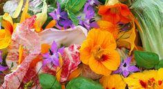 Flores comestíveis são usadas na culinária para uma grande variedade de propósitos: para cozinhar, para servir de moldes para doces, saladas, decorações ou até para Leia mais                                                                                                                                                                                 Mais