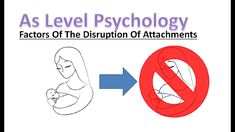 What are the factors which can lead to the disruption of attachments? In this video we will find out and learn more about developmental psychology. A Level Revision, Psychology A Level, Developmental Psychology, Factors, Letters, Twitter, Instagram, Letter, Lettering