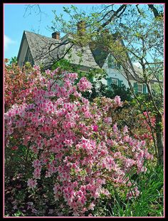Edgewood Plantation in Virginia | Flickr - Photo Sharing!