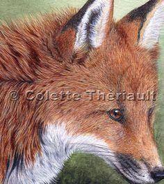 Red Fox faune Peinture-africaine, North American Wildlife Animal Artist