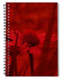 Coneflower Print in red on spiral notebook for journaling. Excellent for keeping daily activity logs or diary notes. Wonderful gift idea for gardening friends. #flower #coneflower #art #gardening #journaling #journal #notebook #giftideasforher #giftsforgardeners #diaries