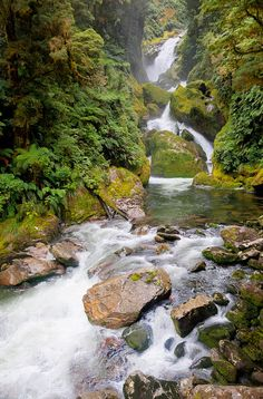 Mackay Falls , Milford Track, Fiordland National Park, New Zealand.