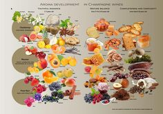 Aroma in #Champagne #Wine via @OandDBeverages : @winewankers @JMiquelWine @MrScottEddy @MacCocktail @tinastullracing