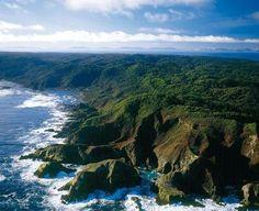 Parque nacional Guamblin region de Aysen . Chile