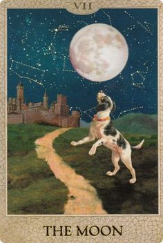 Original Dog Tarot by By Heidi Schulman  Oracle Deck - 30 Cards Published by Potter Style 2012