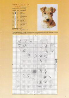 Gallery.ru / Фото #14 - книга собаки - muha-cc
