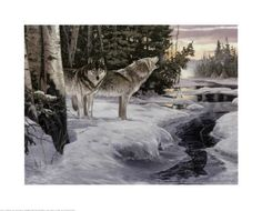 7 best wolf images on pinterest bedroom themes bedroom ideas and