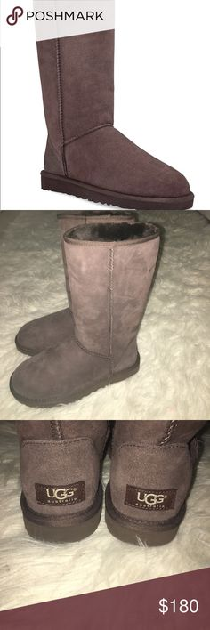 🎉UGG classic tall boots Brand new without box Chocolate brown UGG Shoes Winter & Rain Boots