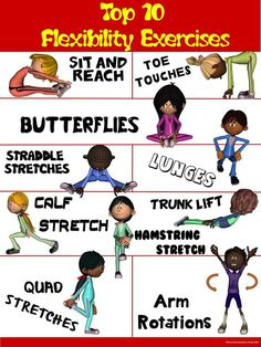 PE Poster: Top 10 Flexibility Exercises: