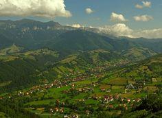 Carparthian Mountains