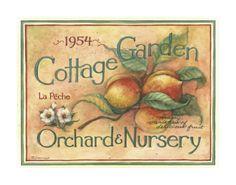 Cottage Garden IV Art Print