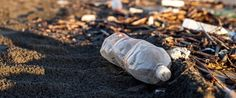 De frutas a plástico y pañales: cuánto tarda la naturaleza en eliminar nuestros residuos