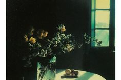 And now I can embrace my frequent dissociation  Andrei Tarkovsky's Polaroids‎