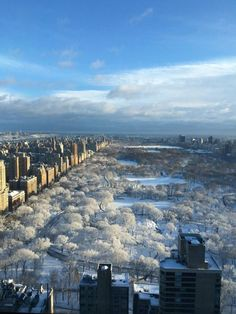 Central Park in the snow - The Best Photos and Videos of New York City including the Statue of Liberty, Brooklyn Bridge, Central Park, Empire State Building, Chrysler Building and other popular New York places and attractions.