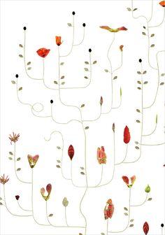 Seed Tree / Fröträd - Lottas Träd/ Lottas Trees