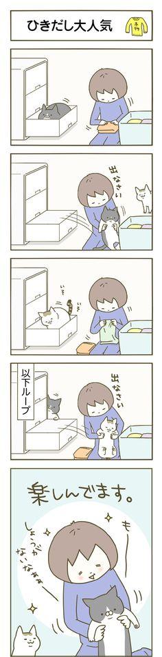 第1話 ひき出し大人気 Neko Atsume, Cat Comics, Crazy Cat Lady, Crazy Cats, Cat Photography, Cat Memes, Cat Toys, I Love Cats, Funny Cute