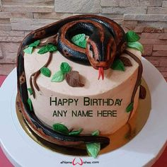 write name on pictures with eNameWishes by stylizing their names and captions by generating text on Snake Birthday Cake Designs with Name with ease. Butterfly Birthday Cakes, Happy Birthday Cakes, Best Christmas Quotes, Christmas Fun, Images For Facebook Profile, Cake Images, Cake Designs, Birthday Celebration, Snake