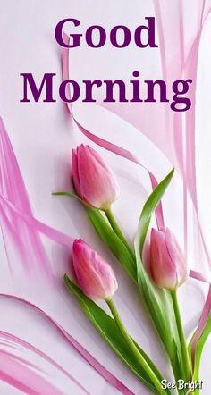 Good Morning... Good Morning Beautiful Images, Good Morning Inspiration, Good Morning Images Hd, Good Morning Messages, Good Morning Greetings, Morning Pictures, Good Morning Wishes, Good Morning Quotes, Special Good Morning