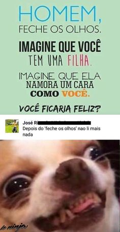 faz-sentido Troll Face, Internet Memes, Try Not To Laugh, Inspiring Quotes About Life, Some Words, Stupid Funny, Funny Photos, I Laughed, Have Fun