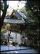 10 ting å gjøre i Tokyo - Reisereportasjer - VG