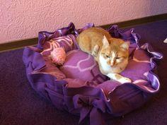 """*großes Schlafbettchen / Kissen """"lila""""  für Katzen oder Hunde * Ebay, Lilac, Cats, Pet Dogs"""