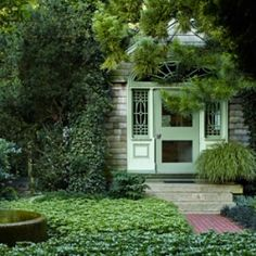 """Expert tip: In your garden, don't under estimate the """"wow potential"""" of pedestrian plants like this """"Green Sheen"""" variety of pachysandra."""