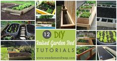 12 DIY Raised Garden Bed Tutorials (the Wine Box Garden Bed would also be an idea for a Balcony)