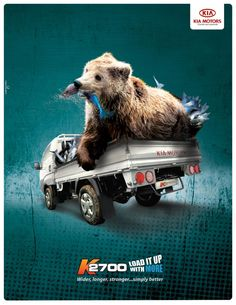 KIA Print Advert By Espacio Creativo: Bear | Ads of the World™