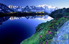 france wildflowers scenery | ... massif reflected in Lac des Cheserys, French Alps, France. Stock Photo