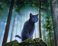 I love Bluestar. Feel bad for her, her mom gets murdered, her sister marries a jerk and she dies soon after giving birth, then she loses her own kit after having a mate from RiverClan, then watches her other two grow up In RiverClan being raised by another mother.