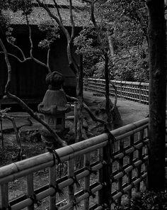 """...z albumu """"Japonia w obiektywie T.L."""" - spacerkiem po Korakuen Garden, Okayama"""