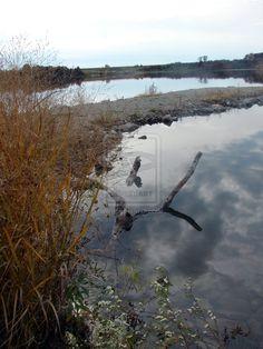 Reflections At The Lake by angelandspot.deviantart.com on @deviantART