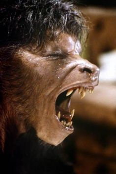 An American Werewolf in London, 1981. David Naughton in mid-transformation. This was done live on-camera by Rick Baker and his makeup EFX crew. Today it would be accomplished using CGI - Computer Generated Images.