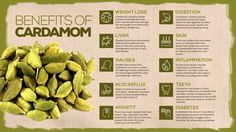10 Surprising Benefits Of Cardamom Cardamom Benefits, Calendula Benefits, Tea Benefits, Health Benefits, Green Beans Benefits, Natural Health Remedies, Natural Cures, Natural Medicine, Herbal Medicine