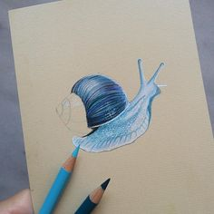 #mulpix Magic  What do you think, guys?  Don't forget to tag someone  ______   #magic  #snail  #cute  #drawing  #draw  #art  #artist  #painting  #colour  #blue  #white  #wip  #workinprogress  #insect  #l4l  #little  #amazing  #pencil  #pencildrawing  #cool  #realistic