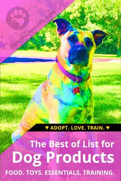 Dog House Air Conditioner The best dog products of the year! Includes dog food toys and so much more! House Air Conditioner The best dog products of the year! Includes dog food toys and so much more! Outdoor Dog Toys, Foster Dog, Rottweiler Puppies, Dog Supplies, Dog Leash, Dog Walking, Dog Care, Dog Grooming, Dog Owners