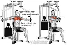 An isolation push exercise. Muscles worked: Lower Pectoralis Major Upper Pectoralis Major short head of Biceps Brachii Pectoralis Minor and Serratus Anterior. Also known as machine chest fly or pec fly. Pec deck fly is a different exercis Cable Workout, Gym Workout Tips, No Equipment Workout, Workout Body, Body Workouts, Swimming Workouts, Swimming Tips, Triceps Workout, Cycling Workout