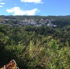 Secret mountain village in #Xizhi #Taiwan. I wonder if any crazy person commutes to work from here via bike? #汐止 秘密的山莊我有一點好奇這邊的居民有沒有瘋狂似地騎腳踏車去上班
